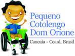 cotolengo Ceara logo